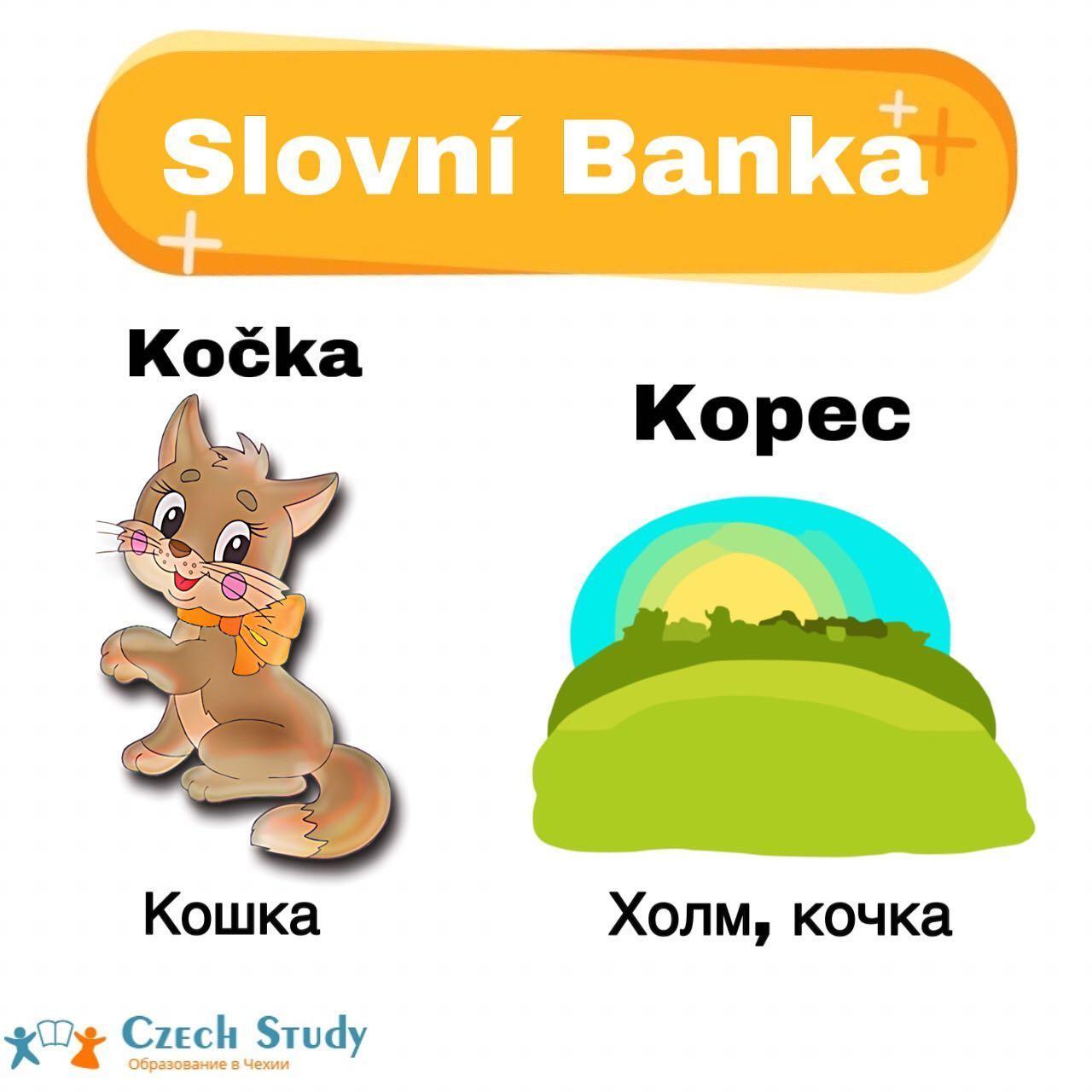 Slovní Banka ⠀ Когда начинаешь учить чешский язык, то, с одной стороны, встречается много слов подобных русским словам, с другой стороны, в чешском языке есть немало слов, которые вызывают смех или улыбку у русского человека. А иногда из-за неправильного понимания чешских слов люди попадают в комические или нелепые ситуации️ ⠀ Вот некоторые из них 🏻 ⠀ Ovoce-[Овоцэ]-фрукты; Zelenina-[Зэлэнина]-овощи; ⠀ Kočka-[Кочка]-кошка; Kopeс, kopeček-[Копэц, копэчек]-холм, горка; ⠀ Frajer-[Фрайэр]-молодец; Zločinec-[Злочинец]-фраер, преступник; ⠀ Pozor-[Позор]-внимание; Hanba-[Ганба]-позор; ⠀ Stůl-[Стул]-стол; Židle-[Жидле]-стул; ⠀ Okurky-[Окурки]-огурцы; Nedopalky-[Недопалки]-окурки; ⠀ Puk-[Пук]-шайба; Pšoukat-[Пшоукат]-пук; ⠀ Houby-[Гоубы]-грибы; Rty-[Рты]-губы. ⠀ Вот такие парой смешные слова в переводе️Ставьте ️ и сохраняйте себе  А в комментариях пишите, какие слова чешского языка удивили вас🤗